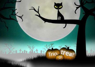 Tổng hợp từ vựng hay nhất về chủ đề Halloween