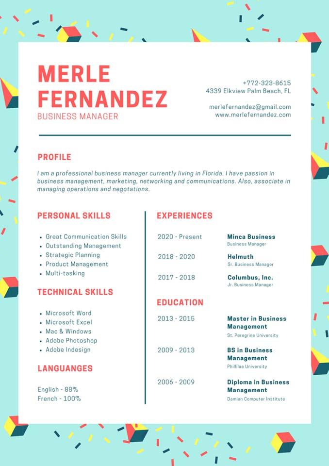 Mẫu CV tiếng Anh 2