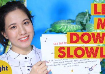 Học tiếng Anh qua bài hát Let Me Down Slowly | Có kèm Lyrics và Vietsub