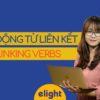 Toàn bộ về Linking Verbs – Động Từ Liên Kết trong tiếng Anh
