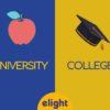 Phân biệt University và College