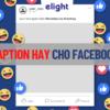 Tổng hợp những caption hay nhất bằng tiếng Anh cho Facebook