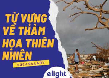 Tổng hợp từ vựng về thảm họa thiên nhiên trong tiếng Anh