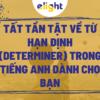 Tất tần tật về từ hạn định (determiner) trong tiếng Anh