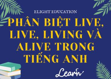 Phân biệt live, life, living và alive trong tiếng Anh