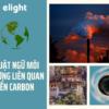 Hiểu hơn về môi trường qua những thuật ngữ liên quan đến carbon